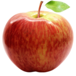 Vocne sadnice jabuke Prim ruž