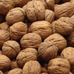 Kalemljene sadnice oraha